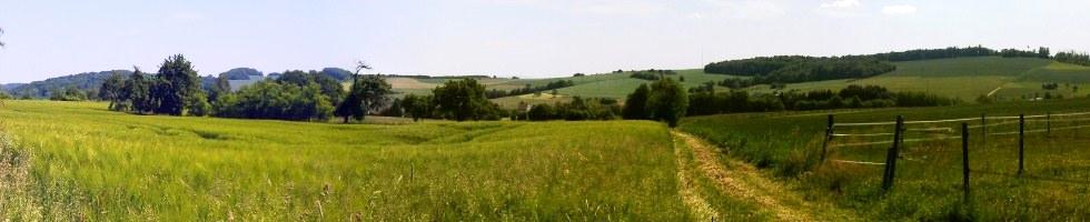 Selchenbach5.jpg